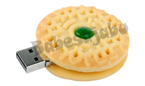 biscuit usb 2