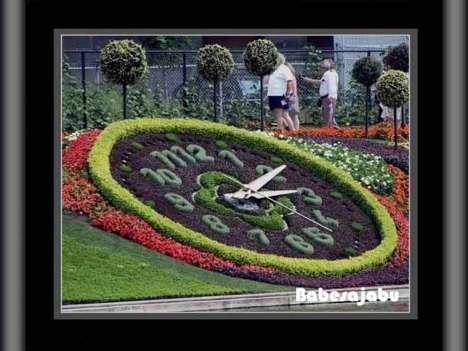 montreal-garden-1