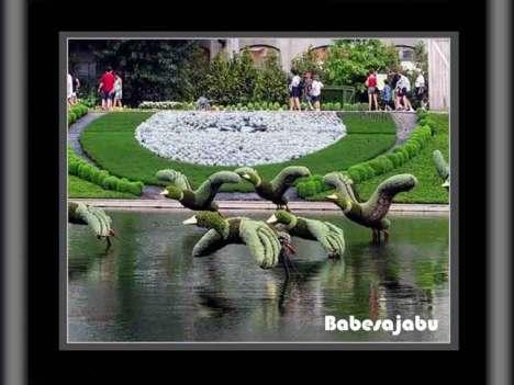 montreal-garden-2