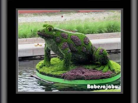 montreal-garden-5